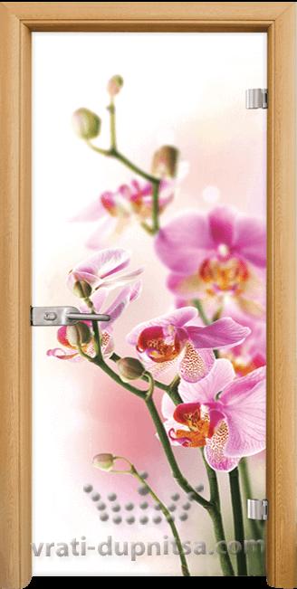 Стъклена интериорна врата модел Print G 13-2
