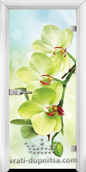 Print G 13 3 Green W