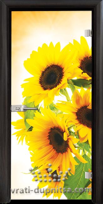 Стъклена интериорна врата модел Print G 13-4