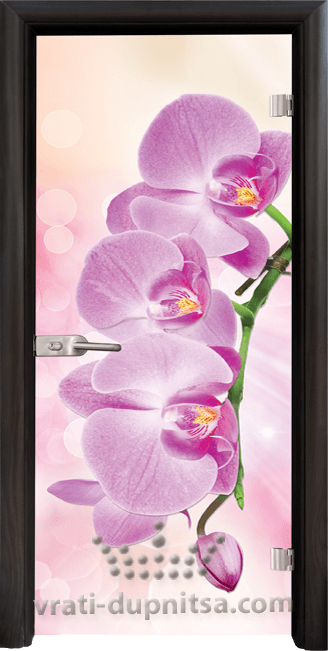 Print G 13 3 Pink B